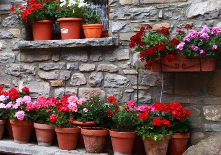 Posode za cvetje